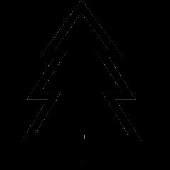 Obraz drzewa które kojarzy się z charakterystyką osiedla Leśna Dolina